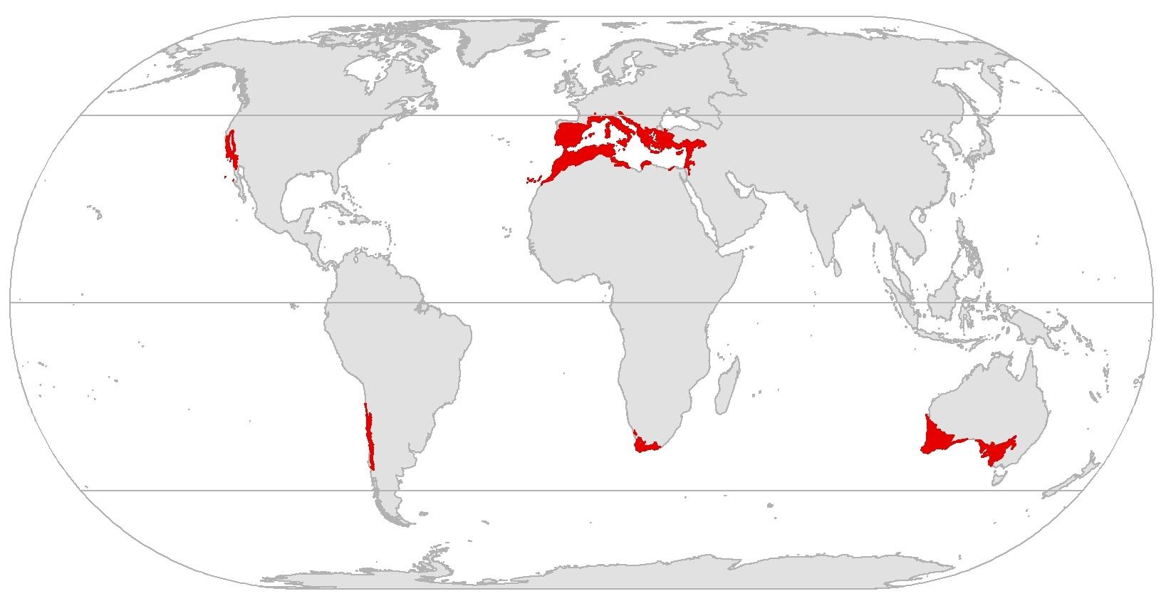 Cover Mediterranean Botany